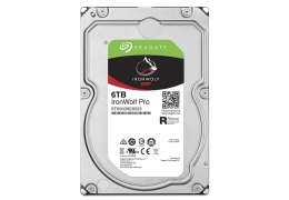 Ổ cứng HDD Seagate Ironwolf Pro 6TB ST6000NE0023